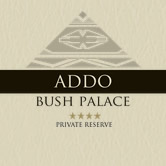 More about ADDO BUSH PALACE